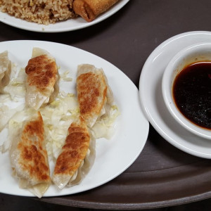 Pan Fired Dumplings